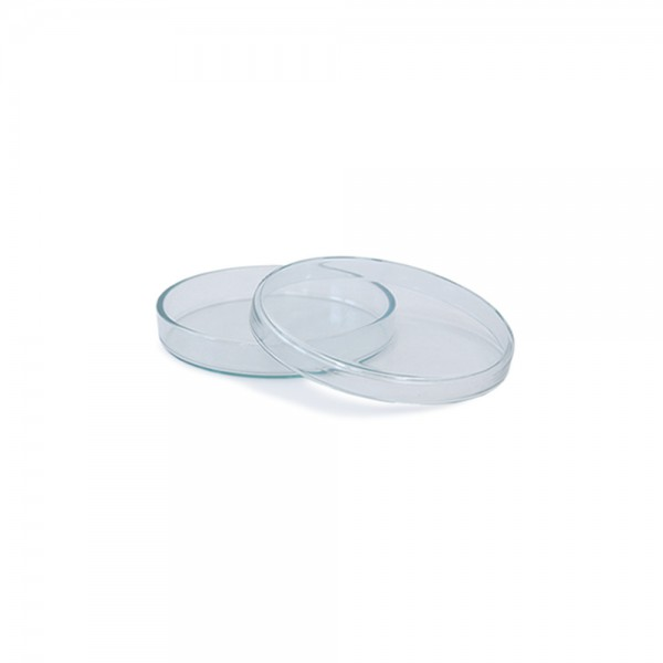 Petrischale aus Glas 60x12mm