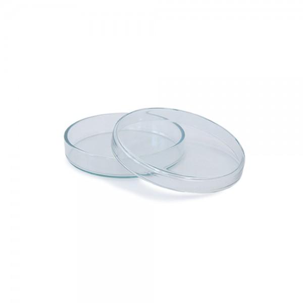 Petrischale aus Glas 70x15mm