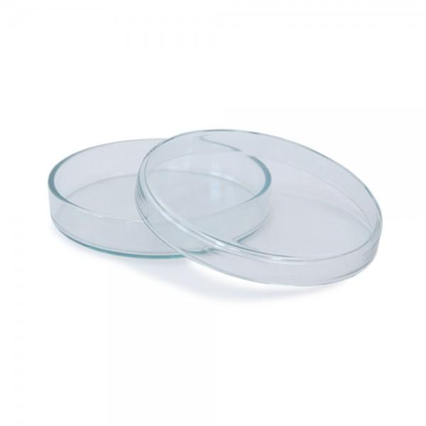 Petrischale aus Glas 120x20mm