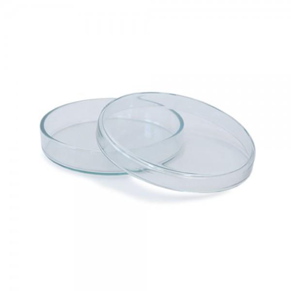 Petrischale aus Glas 100x20mm