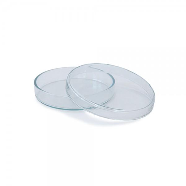 Petrischale aus Glas 80x15mm